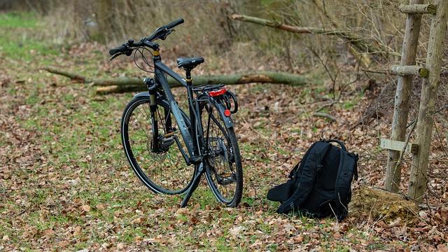 vélo noir dans les bois