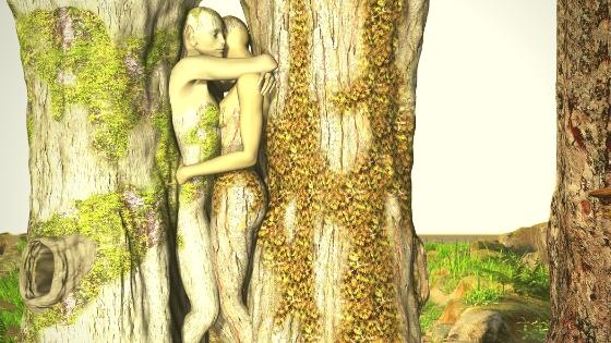 Foto von zwei Baumwesen