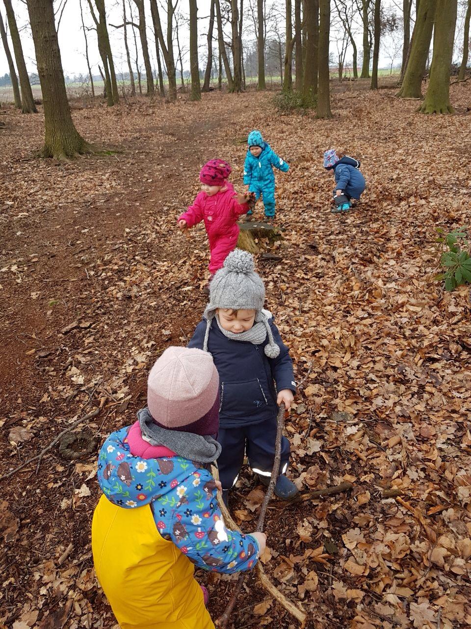 Was man im Wald alles finden kann...