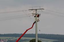 Nach dem Stromtod eines Storches rüstet der Netzbetreiber Bayernwerk derzeit die Stromleitungen im Itzgrund nach