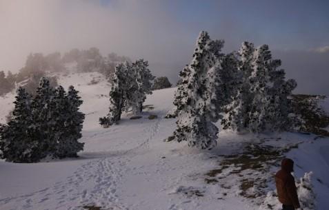 Paysage hivernal en Ardèche