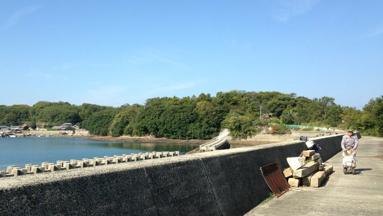 九冨の故郷、沖之島ののどかな風景。
