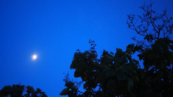 この日は快晴。月の美しい夜となった。その日にしか撮れないものを撮る。