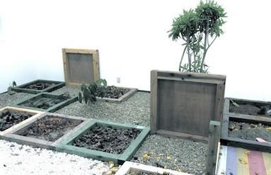 正方形に区切られた木枠の中に、石や土、枯れ葉や枝などが入れられた。