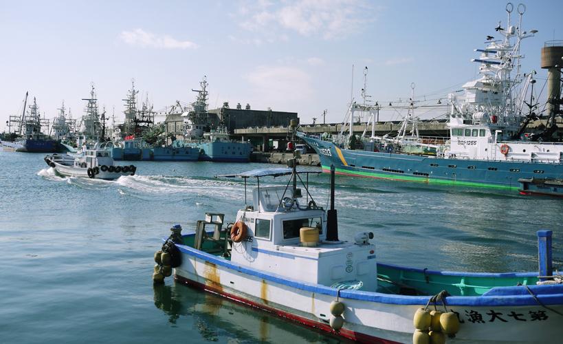 夏はカツオ、秋はサンマ漁でにぎわう小名浜港。