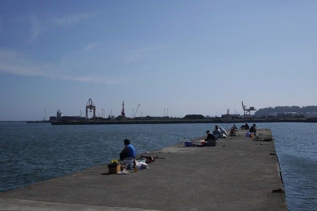 家族連れの釣り客で賑わう藤原埠頭