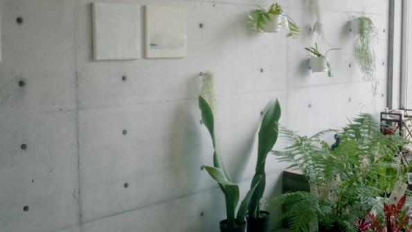 店内では打ちっぱなしのコンクリートと緑が絶妙のバランスで展示・販売されている。