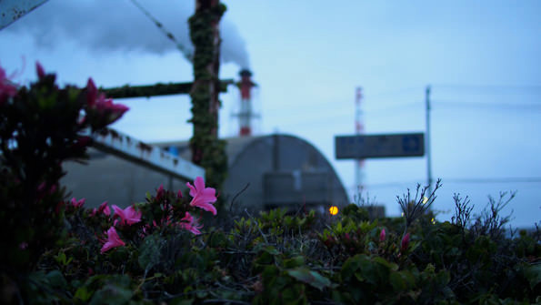 工場のまわりには、季節季節の花が咲く。