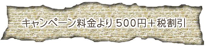 キャンペーン料金より500円+税割引