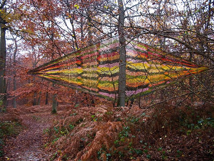 Edith Meusnier  forêt d'Halatte, automne 2011