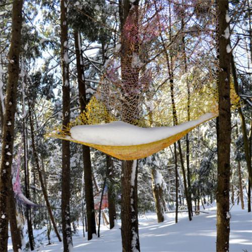 ARTEFACT  Bois de Belle Rivière,  Québec,  Winter 2012