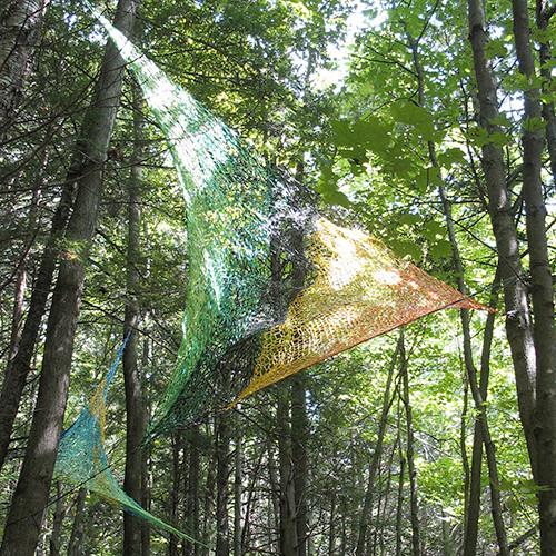 ARTEFACT  Bois de Belle Rivière,  Québec,  Summer2010