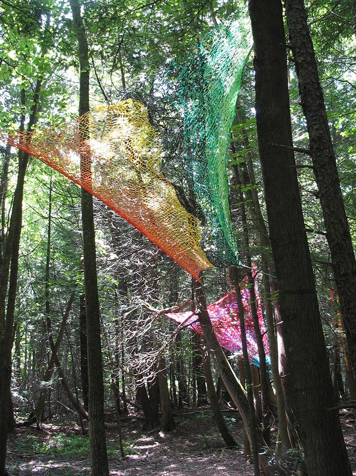 ARTEFACT   Bois de Belle Rivière,   Québec,   2010-2015,  détail