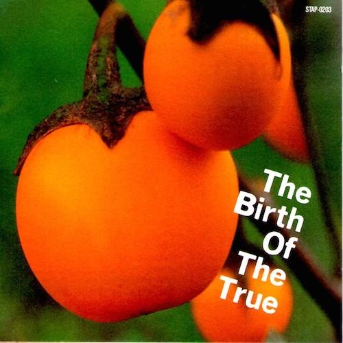 Frosty 2, VA 'The Birth of the True' LP - 写真はたぶんこの日本盤CD用に郵送してそのままで手元にありません。京都の宇治あたりの植物園で撮ったトマトの原種でした
