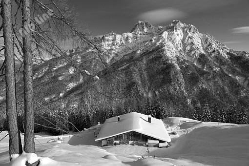 Winter in den Loferer Steinberge bei St. Ulrich am Pillersee, Tirol