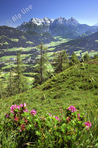 Die Loferer Steinberge bei Fieberbrunn, Tirol