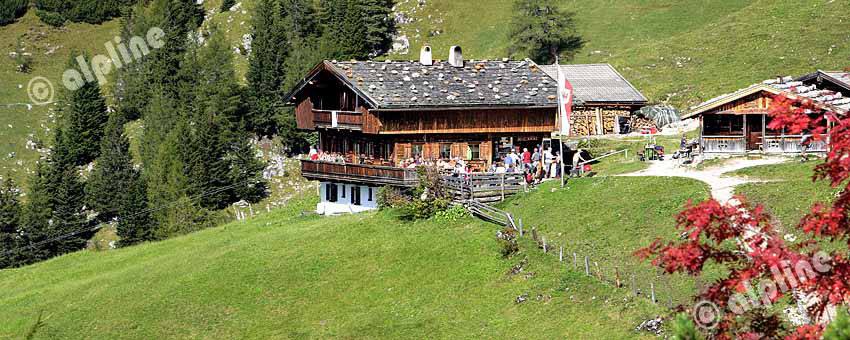 Auf der Dalfazer Alm im Rofan Gebirge am Achensee, Tirol