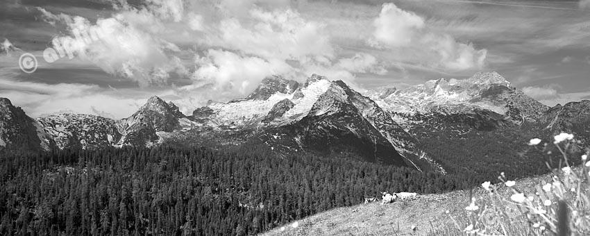 Leoganger Steinberge mit Birnhorn von der Kallbrunn Alm im Steinernen Meer, Salzburger Land (schwarzweiss)