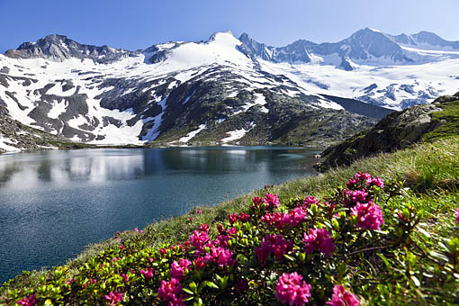 Tirol, Region Zillertal; Wildgerlossee gegen Reichenspitzgruppe mit Gabler