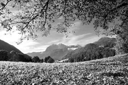 Der Wilde Kaiser von Schwendt im Kaiserwinkel, Tirol