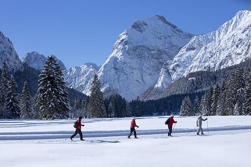 Im Falzthurtal gegen Sonnjoch, Karwendelgebirge, Tirol