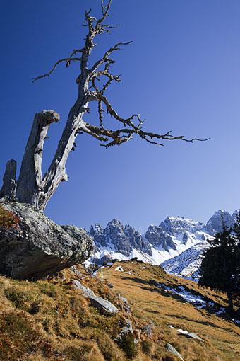 Auf Salfein gegen die Kalkkögel in den Stubaier Alpen, Tirol