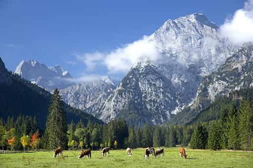 Im Alpenpark Karwendel, das Sonnjoch, Tirol