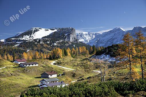 Herbst am Durchkaser gegen Steinplatte und Loferer Steinberge, Tirol