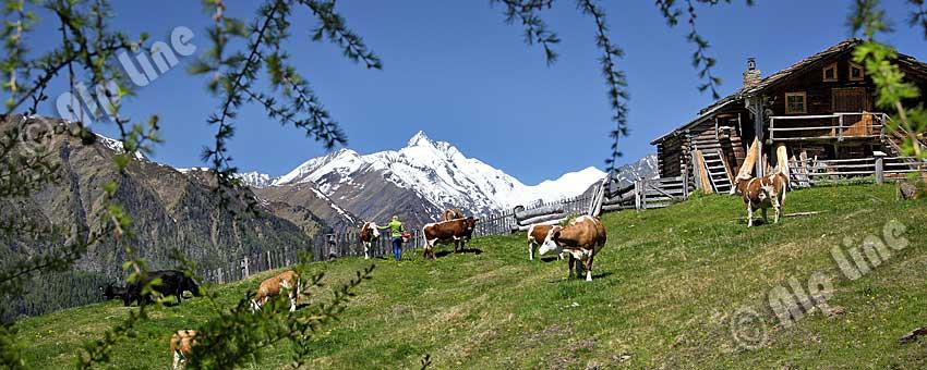 Apriacher Stockmühlen bei Heiligenblut in Kärnten mit Großglockner, Nationalpark Hohe Tauern