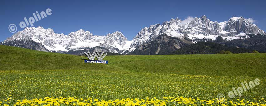 Der Wilde Kaiser bei Going, Nähe Kitzbühel im Frühling, Tirol