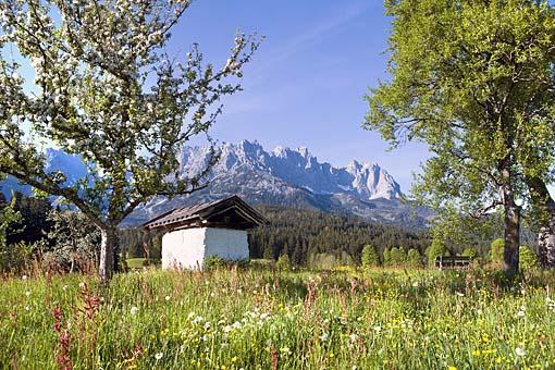 Der Wilde Kaiser bei Going, Nähe Kitzbühel, Tirol