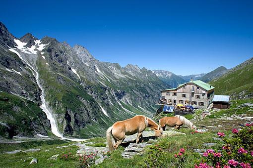 Tirol, Region Zillertal, die Greizer Hütte im Stillupptal im Zillertal