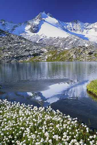 Gabler in der Reichenspitzgruppe mit oberem Gerlossee, Zillertaler Alpen, Tirol