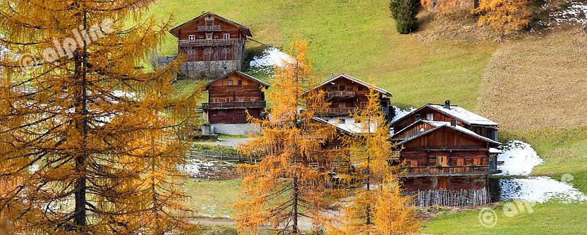 Die Alfenalm bei Kalkstein in den Villgrater Bergen, Osttirol