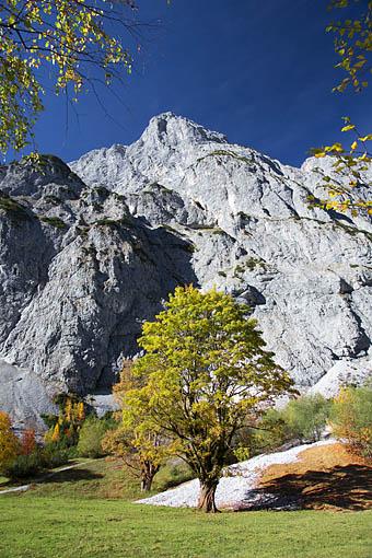 Herbstliches Falzthurntal im Karwendel, Tirol