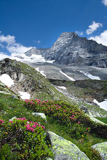 Tirol, Zillertaler Alpen: Olperer und Fußstein (Tuxer Alpen)