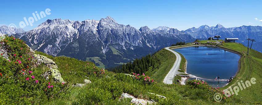 Am Asitzkogel bei Leogang im Pinzgau, Blick auf die Leoganger Steinberge, Salzburg