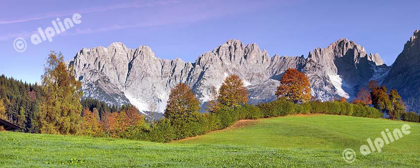 Tirol, Region Kitzbühel: bei Going a.Wilden Kaiser