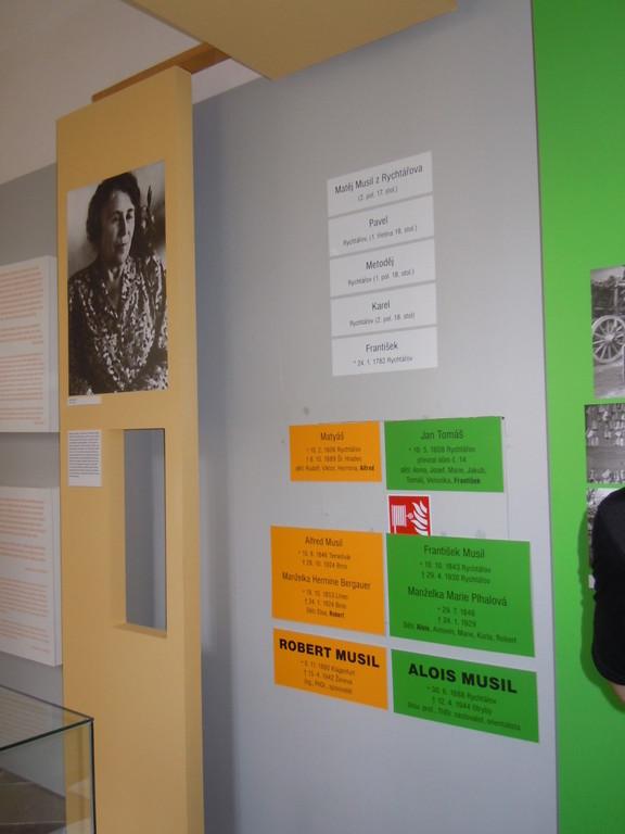 VErwandschaftsdarstellung der beiden Cousins / links ein Bild Martha Musils, der Ehefrau von Robert Musil