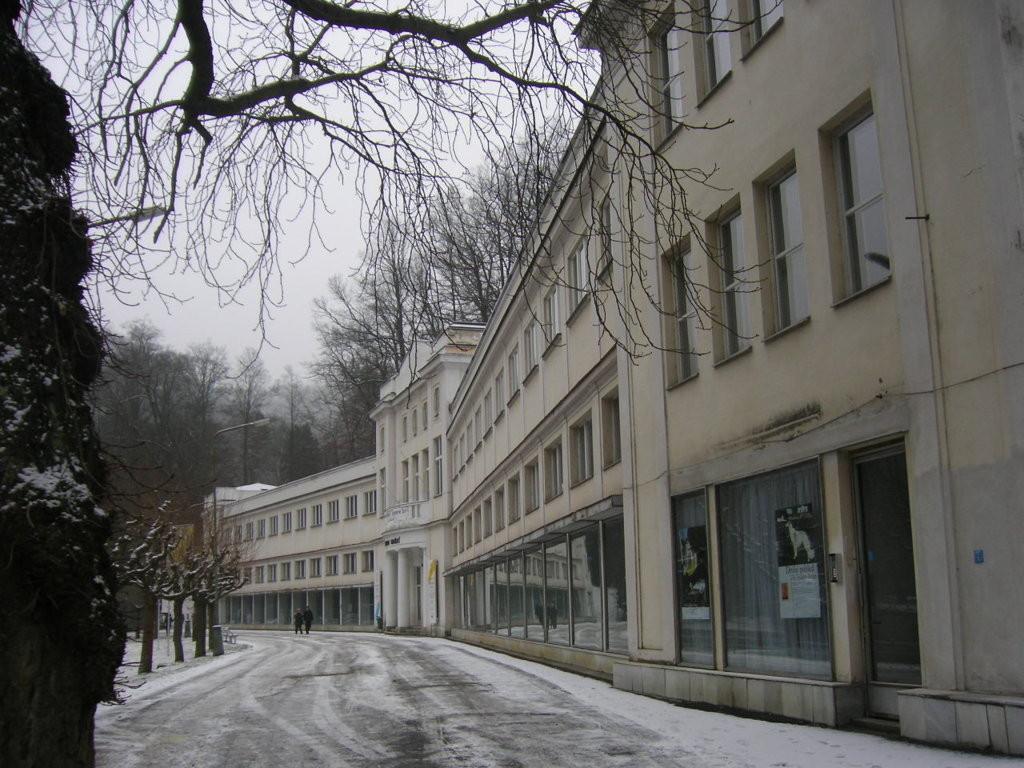 Der erste Impuls für die Ausstellung kam aus Karlsbad.
