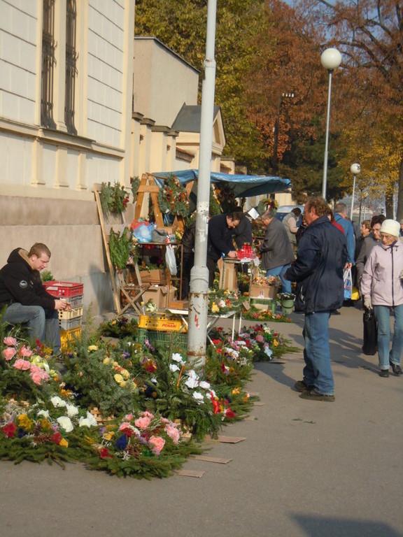 Wir treffen uns vor dem Eingang des Brünner Zentralfriedhofs und wie in alten Zeiten zu Allerheiligen  stehen dort unzählige Verkaufsstände mit Grabschmuck