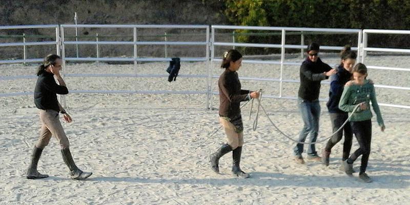 Consiencia y coherencia corporal en el manejo del caballo