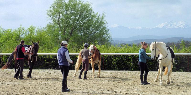 Ayudar al caballo a emplear su cuerpo correctamente
