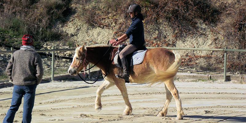 Convertirte en el jinete de los sueños de tu caballo