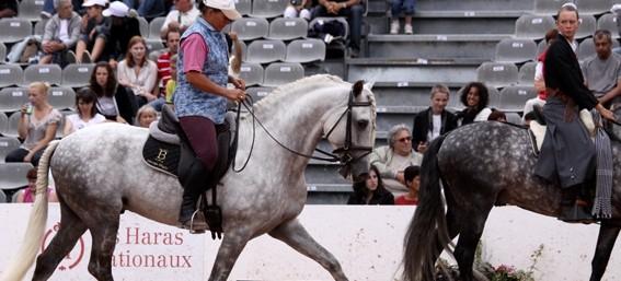 El gran objetivo del método EdC: una equitación en equilibrio y armonía con un caballo ligero y responsivo a las mínimas ayudas del jinete