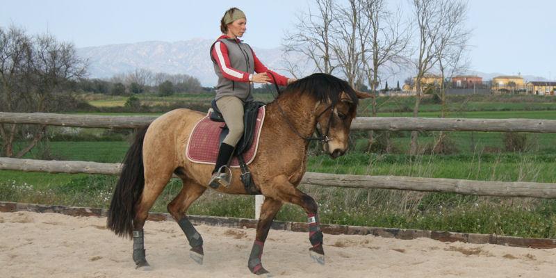 Equitación en armonía y equilibrio