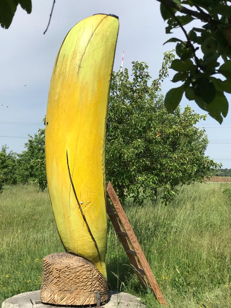 Bienen Banane Buchschwabach