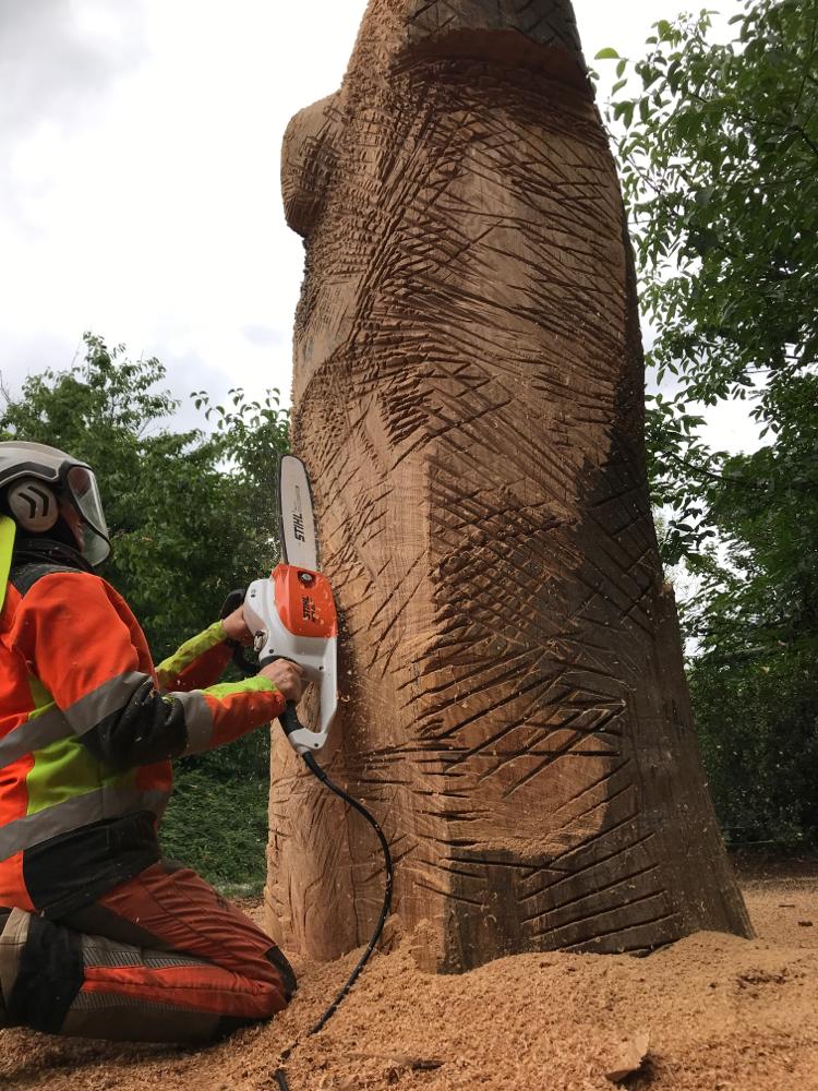 Eichenstammholz für die Holzsammlerin