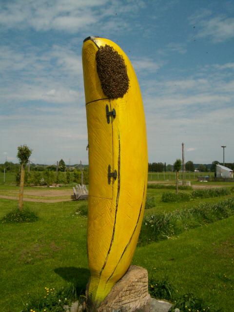 Banane für Bienen fängt sich einen Schwarm, Museum für Gartenkultur, Illertissen 2017