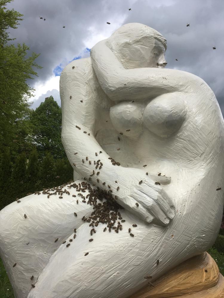 Der Kuss für Bienen frisch besetzt